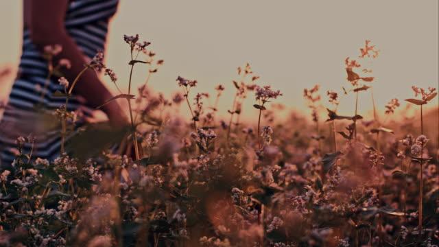 Woman walking through buckwheat video