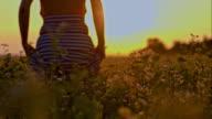 SLO MO Woman walking through field of buckwheat video
