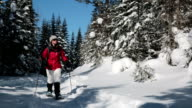 Woman Walking with Snowshoes in Winter Forest Landscape video