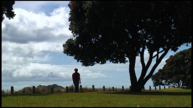 (HD1080) Woman Walks Away - Across Park Under Large Tree video
