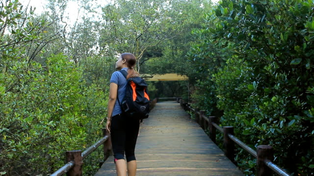 Woman with backpack walks along forest trail video
