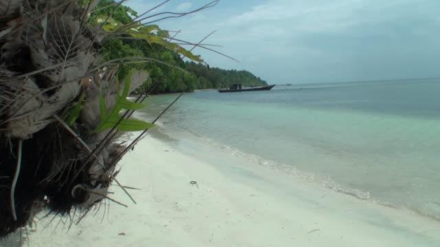 Woman with bikini on the beach of desert tropical island video