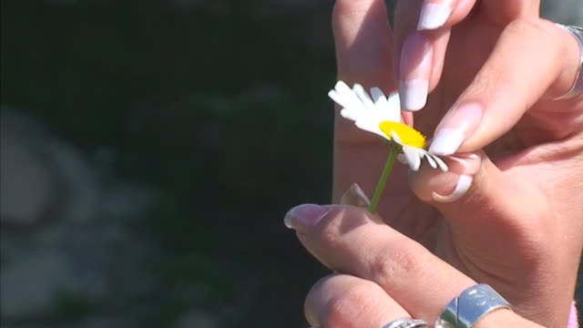 Woman with Daisy by Waterfall video