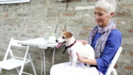 Woman with dog in cafe video