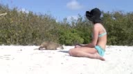 woman with Nutria Otter sand land Cuba video video