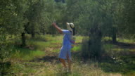 Woman with pad walking in the garden or woods video