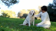 woman with senior labrador dog in the nature video