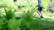 woman work garden lawn video