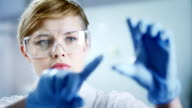 Woman working at the laboratory - clean version video