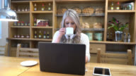 Woman working on her laptop in a coffee place video