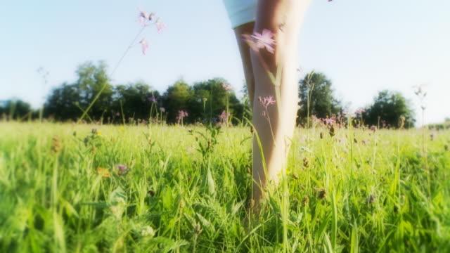 HD: Woman's Feet Walking In Grass video