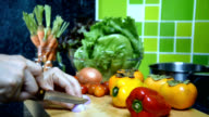 Woman's hands slicing onion, variety vegetable in kitchen/ activity & lifestyle conceptual video