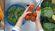 Woman's hands washing tomatoes under running water video