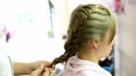 women braid hairstyle in beauty salon video