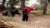 Women cleaning animal farm video