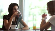 Women having business meeting in coffee shop video