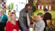 Women in cafe restaurant video