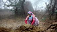 Women making cow dung cakes video