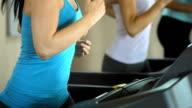 Women Running On The Treadmill video