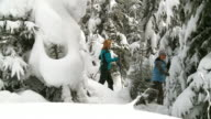 HD: Women Snowshoeing video