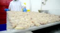 Women workers preparing dry meat in food factory video