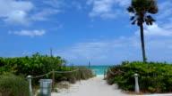 Wonderful beach in the Carribean video
