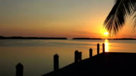 Wonderful paradise bay in the Keys of Florida at sunset video