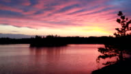 Wonderful pink sunset on forest lake video
