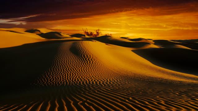 Wonderful Sahara desert landscape. Dunes at sunset. video
