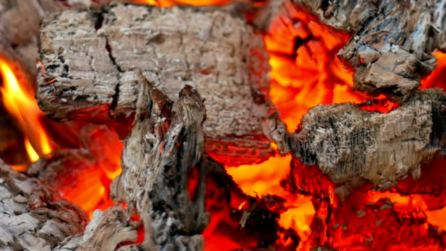 Wood burning close up - Stock video. video