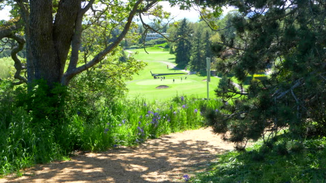 Wood Chip Trail with View Over Green Golf Course, Leisure Sport Beautiful Day video