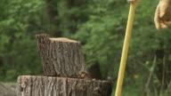 Wood Chop 24_02S video