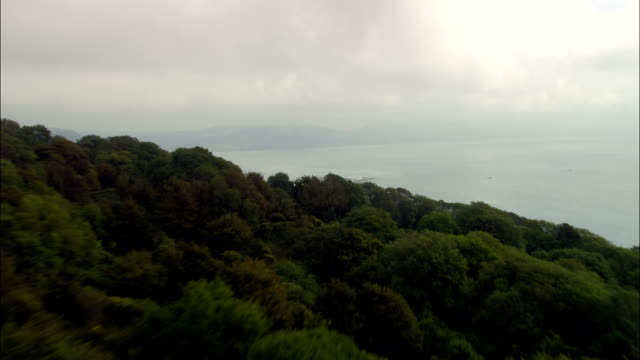 Wood near Lyme Regis - Aerial View - England, Dorset, West Dorset District, United Kingdom video