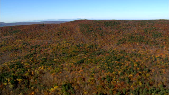 wooded landscape - Aerial View - Massachusetts,  Berkshire County,  United States video