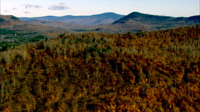 Wooded Landscape  - Aerial View - New Hampshire,  Coös County,  United States video