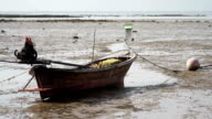 wooden boat aground video