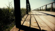 Wooden bridge over the river. Reeds grow around. Dolly. Close up video