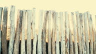 wooden fence from big trunks, in the background sundown with sunflare video