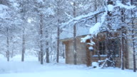 Wooden House in the Forest and Snowfall video