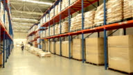 Worker Checking Inventory In Warehouse video