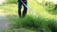 Worker Cutting Grass video