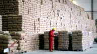 Worker in Large Warehouse With Sacks video