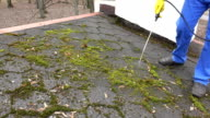 worker man spray moss with chemicals on roof tiling video