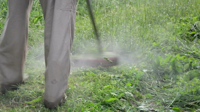 worker mow wet grass video