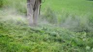 worker mow wet grass video