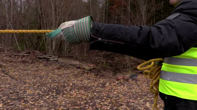 Worker pulling rope in forest in autumn video