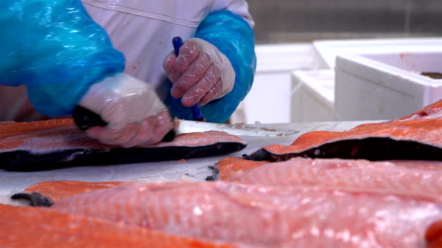 Worker slicing a fillet of salmon at table on the fish factory. Dolly shot video
