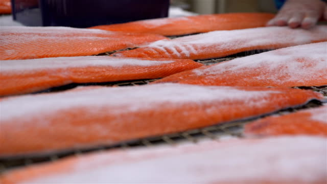 Workers applying salt on salmon fillets lying on table video