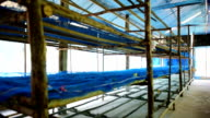 Workhouses Silk video