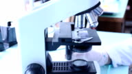 Working with a microscope. Lab microscope. Setting the microscope. Preparation of the microscope to work. video